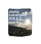 Aloha 2017(個別スタンプ:02)