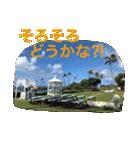 Aloha 2017(個別スタンプ:14)