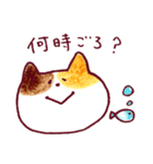 みっけにゃん(個別スタンプ:17)