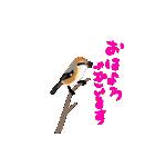 動く日本の野鳥 秋冬(個別スタンプ:03)