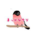 動く日本の野鳥 秋冬(個別スタンプ:16)