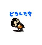 動く日本の野鳥 秋冬(個別スタンプ:20)