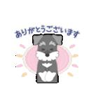 動く!シュナのつな子 10(個別スタンプ:03)