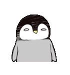 おはようからおやすみまで皇帝ペンギン(個別スタンプ:12)