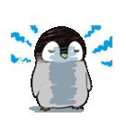 おはようからおやすみまで皇帝ペンギン(個別スタンプ:13)