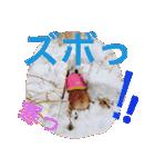 コーギー☆マンデー2(個別スタンプ:05)