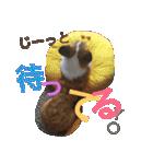 コーギー☆マンデー2(個別スタンプ:08)