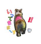 コーギー☆マンデー2(個別スタンプ:17)
