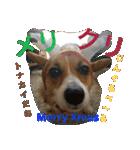 コーギー☆マンデー2(個別スタンプ:18)