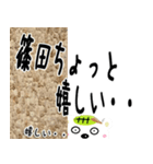 ★篠田さんの名前スタンプ★(個別スタンプ:01)