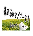 ★篠田さんの名前スタンプ★(個別スタンプ:07)