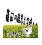 ★篠田さんの名前スタンプ★(個別スタンプ:11)