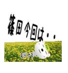 ★篠田さんの名前スタンプ★(個別スタンプ:19)