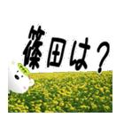 ★篠田さんの名前スタンプ★(個別スタンプ:23)