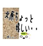 ★北原さんの名前スタンプ★(個別スタンプ:01)