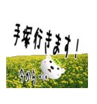 ★手塚さんの名前スタンプ★(個別スタンプ:15)