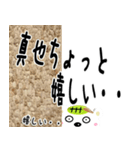 ★真也さんの名前スタンプ★(個別スタンプ:01)