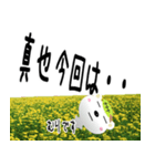 ★真也さんの名前スタンプ★(個別スタンプ:19)