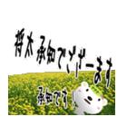 ★将太さんの名前スタンプ★(個別スタンプ:07)