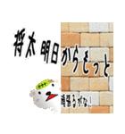 ★将太さんの名前スタンプ★(個別スタンプ:08)