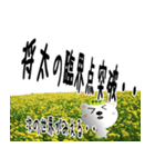 ★将太さんの名前スタンプ★(個別スタンプ:11)