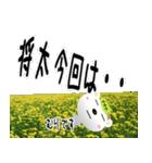 ★将太さんの名前スタンプ★(個別スタンプ:19)