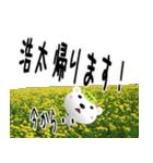 ★浩太さんの名前スタンプ★(個別スタンプ:15)