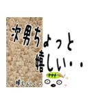 ★次男さん専用のスタンプ★(個別スタンプ:01)