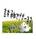 ★吉井さんの名前スタンプ★(個別スタンプ:07)
