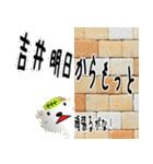 ★吉井さんの名前スタンプ★(個別スタンプ:08)