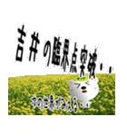 ★吉井さんの名前スタンプ★(個別スタンプ:11)