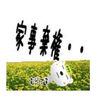 ★家事ストレス専用★(主婦or主夫の方へ)(個別スタンプ:19)