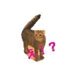 2匹の猫ちゃんの使いやすいスタンプ(個別スタンプ:09)