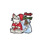 クリスマスしまねこスタンプ(個別スタンプ:01)