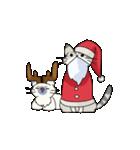 クリスマスしまねこスタンプ(個別スタンプ:15)