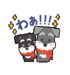 【雪合戦】シュナのつな子 11 冬編(個別スタンプ:26)