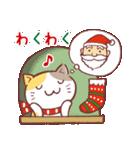 クリスマス色の猫たち(個別スタンプ:13)