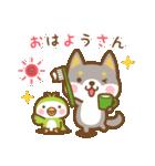 柴犬さんたちのシンプルスタンプ(個別スタンプ:01)