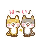 柴犬さんたちのシンプルスタンプ(個別スタンプ:05)