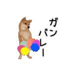 元気いっぱいの柴犬(個別スタンプ:2)