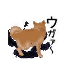 元気いっぱいの柴犬(個別スタンプ:8)
