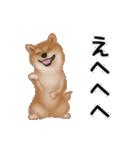 元気いっぱいの柴犬(個別スタンプ:17)