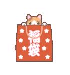 NEW YEAR 2018〜三毛猫とオート三輪(個別スタンプ:13)
