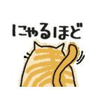 ねこまるけ♪(個別スタンプ:26)