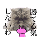 ぴょいーんちゃんスタンプ(個別スタンプ:39)