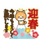 【戌年】柴犬のお正月&日常2018(個別スタンプ:03)