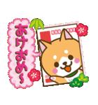 【戌年】柴犬のお正月&日常2018(個別スタンプ:05)
