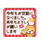 【戌年】柴犬のお正月&日常2018(個別スタンプ:11)