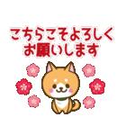 【戌年】柴犬のお正月&日常2018(個別スタンプ:12)