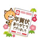 【戌年】柴犬のお正月&日常2018(個別スタンプ:17)